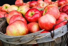 Basket Of Apples Royalty Free Stock Images