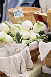 Basket of Onions Royalty Free Stock Photography