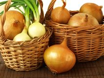 Basket of onions Stock Image