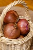 Basket of onions. Royalty Free Stock Photos