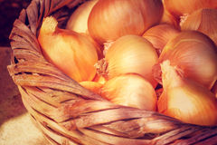 Basket with onions Stock Photo