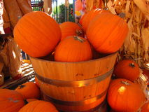 Basket of orange pumpkins. Inside market of Glendale, California Royalty Free Stock Photos