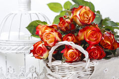 Basket of orange roses and white victorian birdcage Royalty Free Stock Images