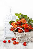 Basket of orange roses and white victorian birdcage. On white background Stock Photography