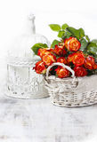 Basket of orange roses and white victorian birdcage. On white background Stock Photos
