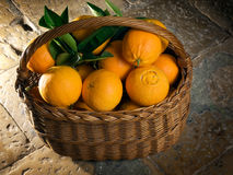 Basket of oranges Stock Image