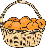 Basket of Oranges. A basket of oranges are ready to eat royalty free illustration