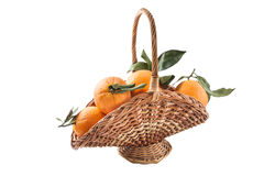 Basket of oranges Royalty Free Stock Images