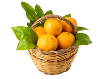 Basket with oranges Royalty Free Stock Images
