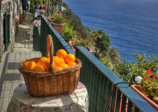 A Basket with Oranges Royalty Free Stock Photography