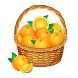 Basket with oranges fruits. Vector illustration. Stock Photo