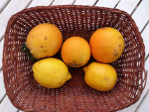 Basket of Oranges and Lemons Lesvos Greece Stock Image