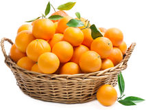 Basket with oranges Royalty Free Stock Image