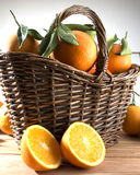 Basket with oranges Stock Image