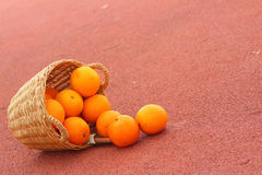 Basket of oranges on red background.  Stock Image