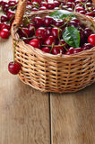 Basket of organic Cherries Royalty Free Stock Image