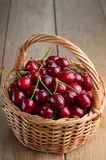 Basket of organic Cherries Royalty Free Stock Photos