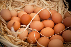 Basket of organic eggs in a rural farmers market Stock Photo