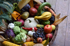 Basket of organic food vegetables Royalty Free Stock Photos