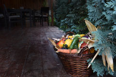 Basket of organic food vegetables Stock Photography
