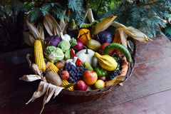 Basket of organic food vegetables Royalty Free Stock Photography