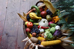Basket of organic food vegetables Royalty Free Stock Image
