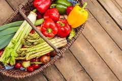 Basket with organic fresh vegetables Stock Image