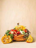 Basket with organic harvest vegetables and pumpkin from garden. Autumn seasonal food stock photos