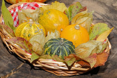 Basket with ornamental gourds, autumn leaves, various nuts and P Stock Photo