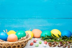 Easter eggs in a Basket, painted in different color on a blue background with a place for the inscription and green twig Royalty Free Stock Images