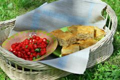 Basket party - picnic Royalty Free Stock Photography
