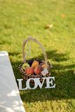 Basket of peaches Royalty Free Stock Photo