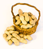 Basket of peanuts Royalty Free Stock Photo