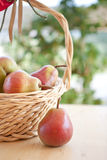 A basket with pears Stock Images