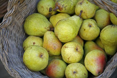 Basket of pears Stock Image