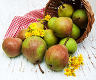 Basket with pears Royalty Free Stock Photo