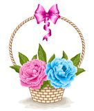 Basket with peonies Stock Images
