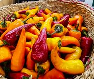 Spicy basket royalty free stock photography