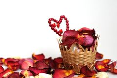 Basket with petals of roses Stock Photos