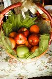 Basket for picnic Royalty Free Stock Photography