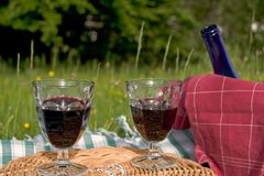 Basket of picnic. In grass posed on a tablecloth Stock Images