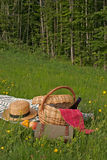 Basket of picnic. In grass posed on a tablecloth Stock Photos