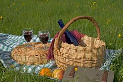 Basket of picnic. In the nature vith beverage Royalty Free Stock Photos