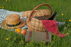 Basket of picnic. In grass posed on a tablecloth Royalty Free Stock Photos
