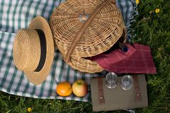 Basket of picnic. In grass posed on a tablecloth Royalty Free Stock Photo