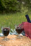 Basket of picnic. In grass posed on a tablecloth with vine in glasses Royalty Free Stock Images