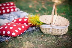 Basket for a picnic on the grass Stock Image