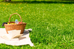 Basket for a picnic on the lawn and the free space. On the right Stock Photos