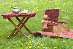 Basket for picnic with teddy bear Royalty Free Stock Photos