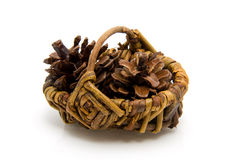 Basket with pine cones Royalty Free Stock Images